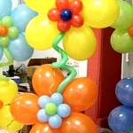 Baloons for all occations102