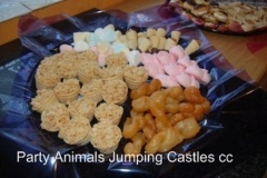 Party Animals Jumping Castels offers Kids Platters008