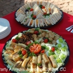 Party Animals Jumping Castels offers Savoury Platters006