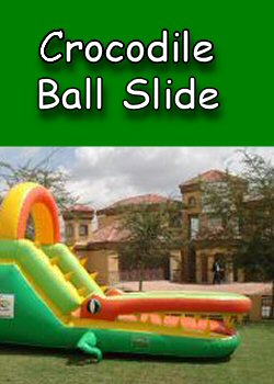 Crocodile Ball Slide