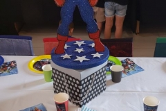 Party-Animals-For-all-your-Jumping-Castles-and-party-hire-needs-made-this-Avengers-2