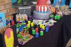 Party-Animals-For-all-your-Jumping-Castles-and-party-hire-needs-made-this-Avengers-3