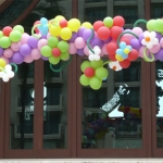 Baloons for all occations051