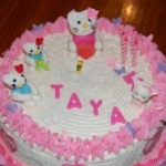 Girl themed Cakes012