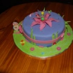 Girl themed Cakes029
