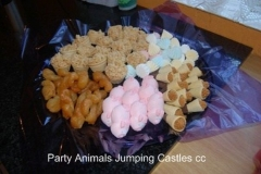 Party Animals Jumping Castels offers Kids Platters006