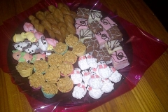 Party Animals Jumping Castels offers Kids Platters016