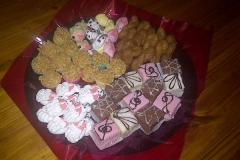 Party Animals Jumping Castels offers Kids Platters018
