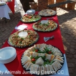 Party Animals Jumping Castels offers Savoury Platters004