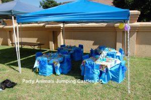 Winnie The Pooh Setup