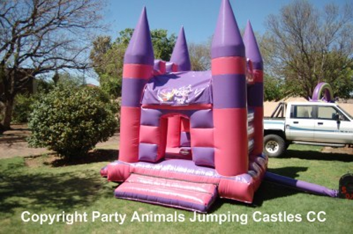 Mini Princess 1 Fun 4 Party Animals For all your Jumping Castles and party hire needs