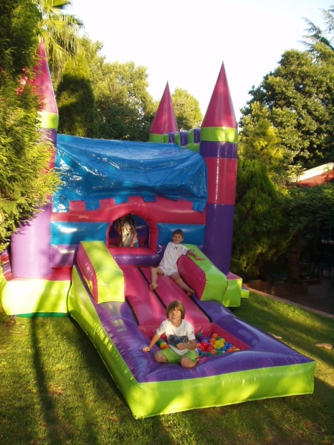 Princess Slide Ball Castle 2 Fun 4 Party Animals For all your Jumping Castles and party hire needs