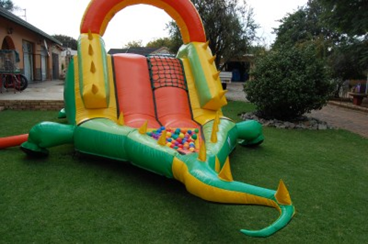 Crocodile Ball Slide 2 Fun 4 Party Animals For all your Jumping Castles and party hire needs