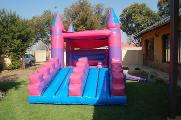 Princess Double Slide 2 Fun 4 Party Animals For all your Jumping Castles and party hire needs