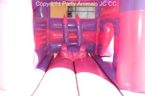 Mini Princess 2 Fun 4 Party Animals For all your Jumping Castles and party hire needs