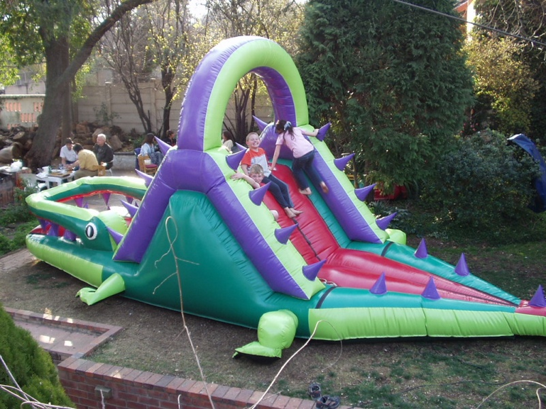 Crocodile Slide 1 Fun 4 Party Animals For all your Jumping Castles and party hire needs