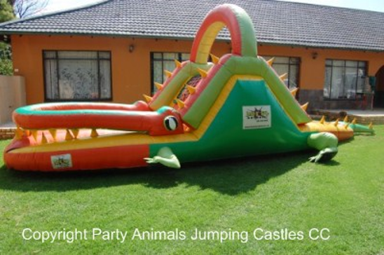 Crocodile Ball Slide 1 Fun 4 Party Animals For all your Jumping Castles and party hire needs