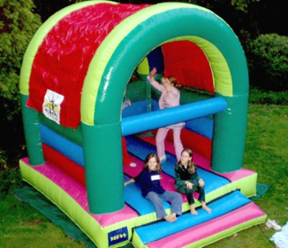 Small 1 Fun 4 Party Animals For all your Jumping Castles and party hire needs