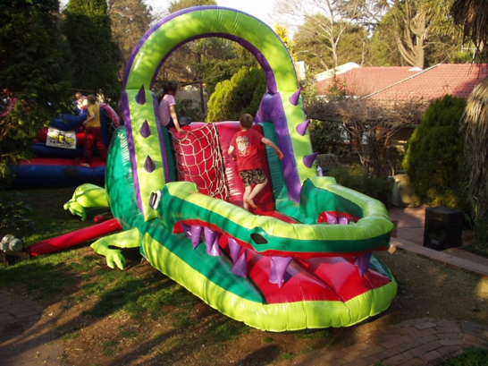 Crocodile Slide 2 Fun 4 Party Animals For all your Jumping Castles and party hire needs